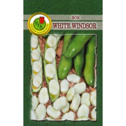 Bób WHITE WINDSOR 50 gram